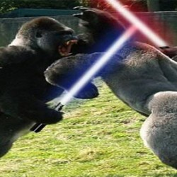 Two gorillas fighting with light sabers