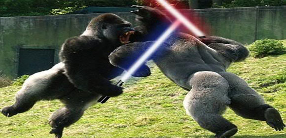 Gorillas Fighting With Lightsabers Gorillas jpgGorillas Fighting With Lightsabers